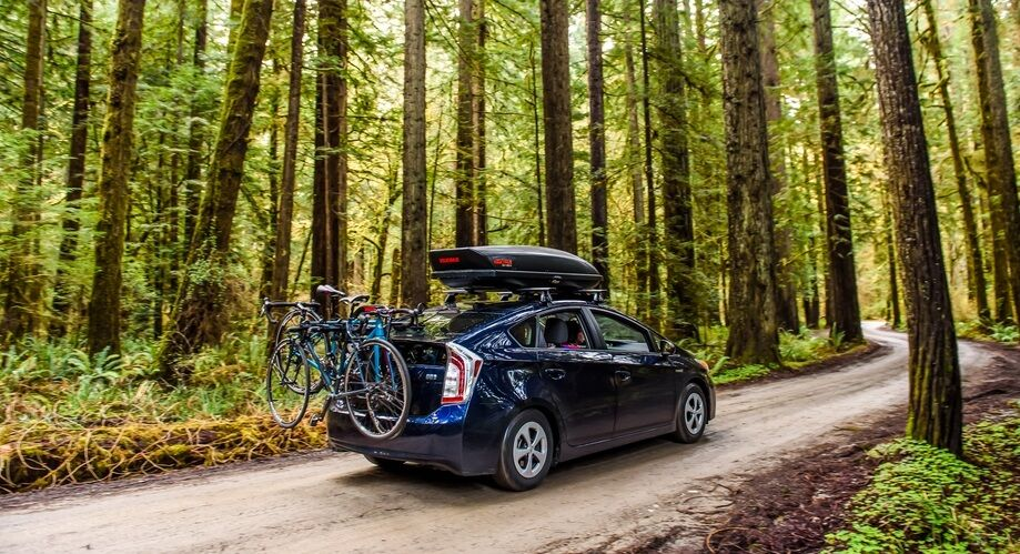 Web Use Jpg Redwoods Bike 32